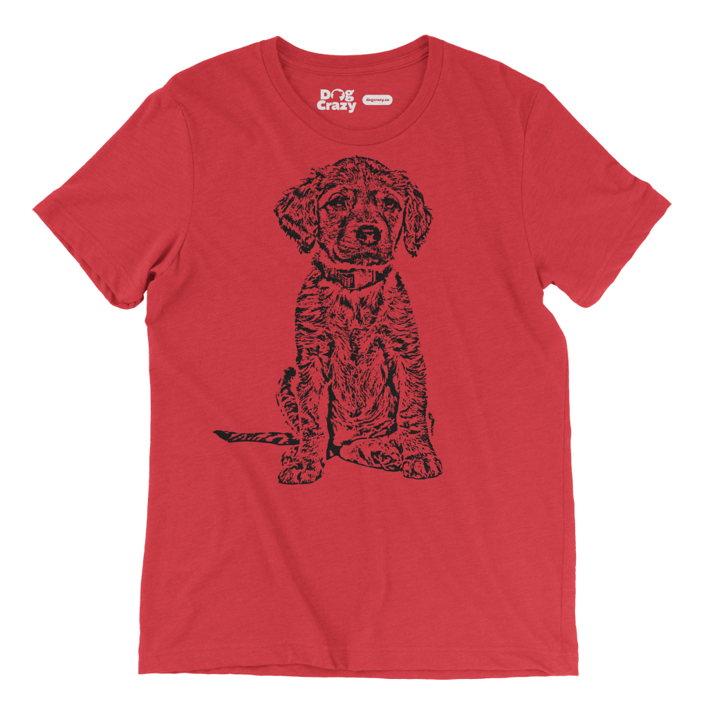 Dog Crazy T-Shirts for Men