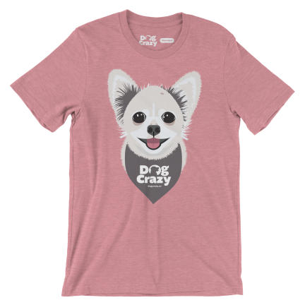 Orchid Long-Haired Chihuahua t-shirt by dog crazy
